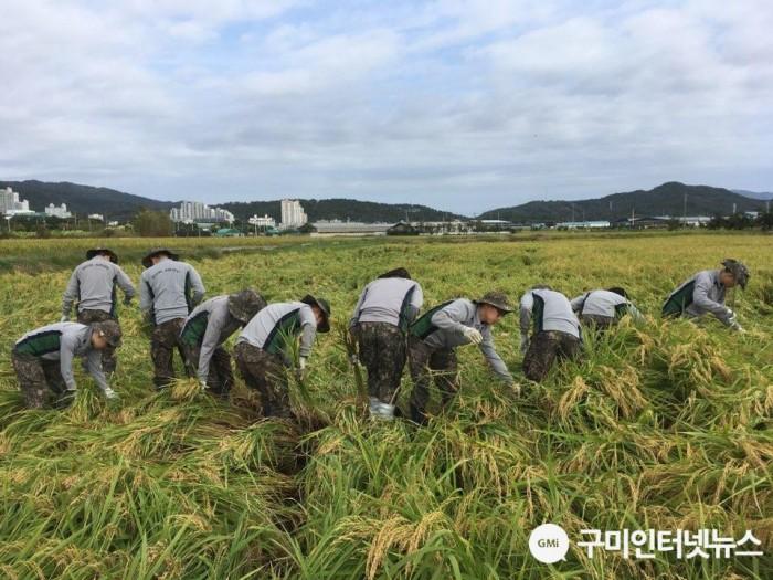 [농정과]태풍 피해농가 일손돕기 실시8(일손돕기).jpg