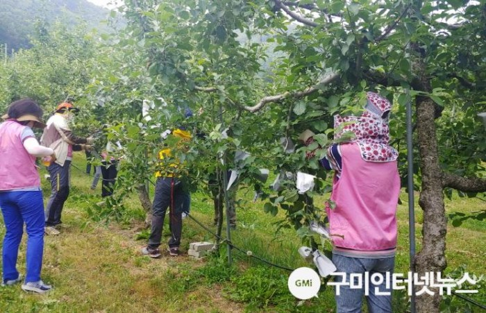 사본 -[형곡1동]농촌일손돕기3.jpg