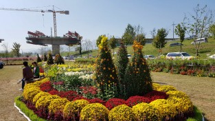 구미시농업기술센터, 우리꽃야생화 가을전시회 개최